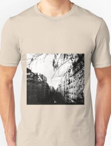 The Windows of Paris  T-Shirt