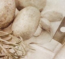 Still life of Chestnut mushrooms and Rosemary by Artmassage