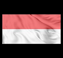 Indonesia Flag by JoCa-byJoeCarr