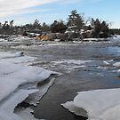 Small Icy Bay by Tracy Wazny