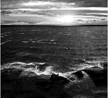 Black White Bay  by Polar Impressions  Photography