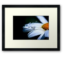 Perfect Drop Framed Print