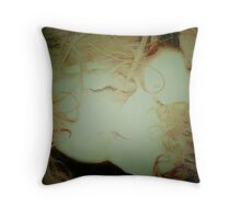 Knowing me...knowing you Throw Pillow