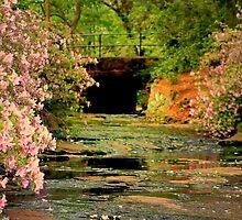 Impressions of Spring by Darlene Lankford Honeycutt