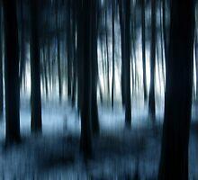Forest 30 by bluefinart