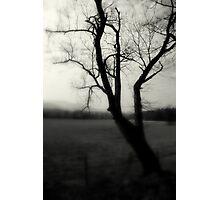 Silent Despair Photographic Print