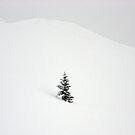 Little Snow Tree by berndt2