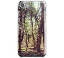 A sunny forest in Yorkshire iPhone Case/Skin