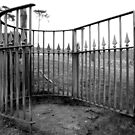 Cemetery Gates by Paula Cowley