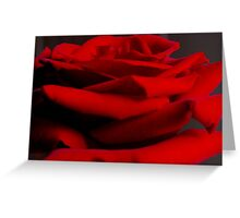 The Petal Stack Greeting Card