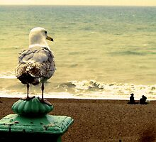 Oh, I do love to be beside the seaside by HannahT