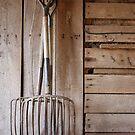 forked (untouched) by regina