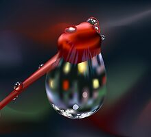 Water Drop on Bud by lydiasart