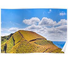 Ants Marching - Landscape in Nicaragua Poster