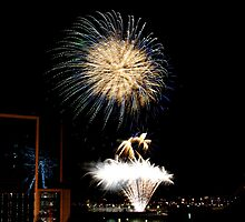 New Years Eve Fireworks 1 by orianne