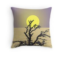 Dry Throw Pillow