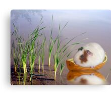 Stuck In The Reeds Metal Print