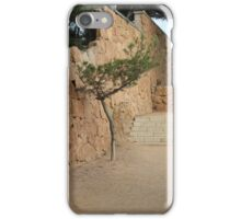 The art of Nature iPhone Case/Skin
