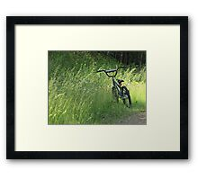 Bicycle Waiting For Summer Rider Framed Print