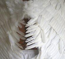Angel's Tread by Robert Knapman
