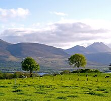 Aghadoe Hill in Springtime by Alex Cassels
