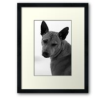 I'm so sad Framed Print
