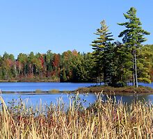 Autumn on the Lake by vette