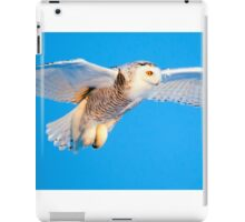 I Know you Are Down There iPad Case/Skin