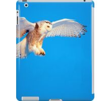 Smooth Landing iPad Case/Skin