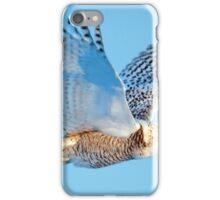 Soaring iPhone Case/Skin