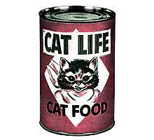 Vintage Cat Photographic Print