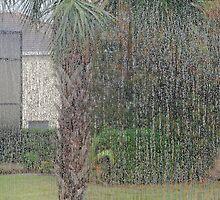 Deluge!  by John  Kapusta