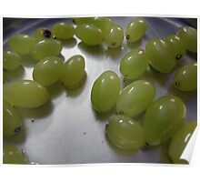 Wet grapes glistening on a metal plate Poster