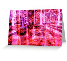 Colorful Forest Trees Pink Red Purple  Greeting Card