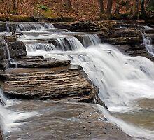 Campbells Falls II by Jason Vickers