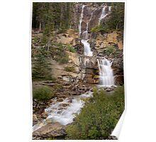 Tangle Falls Poster