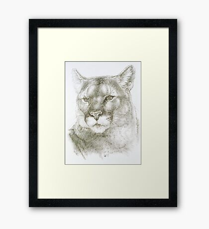 Maverick Framed Print