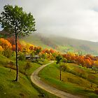Autumn road by Karl Smutko