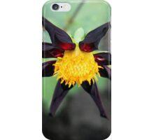 An Octopus in the Garden iPhone Case/Skin