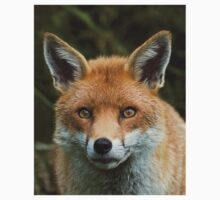 Red Fox portrait T-Shirt