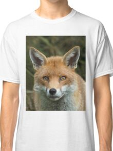 Red Fox portrait Classic T-Shirt