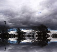 Storm Over Ahwatukee Lake by WhiteDove Studio kj gordon