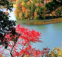 Fall in Northwest Arkansas by LisaM