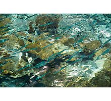 Abstract of the Underwater World. Production by Nature Photographic Print