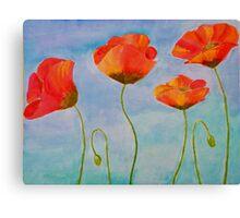 red amapola Canvas Print