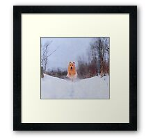 Flying in the Snow Framed Print