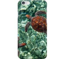 Fragile Underwater World. Sea Turtles in a Crystal Water. Maldives iPhone Case/Skin