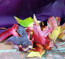 Leaves of Fall by RoyAllen Hunt