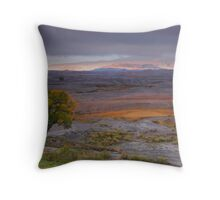 Delta Colorado Throw Pillow