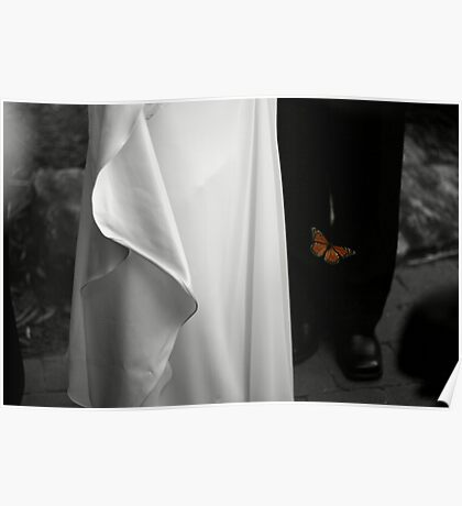 Wedding butterfly Poster